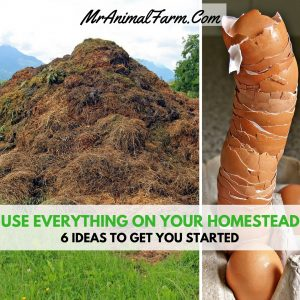 Use everything on your homestead