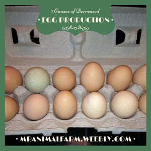 Causes Decreased Egg Production