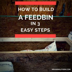 build a feed bin