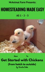 Raising Chickens eBook
