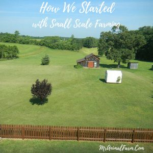 How we started with small scale farming