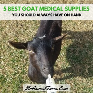 goat medical supplies