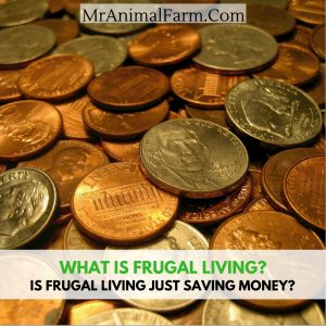 what is frugal living